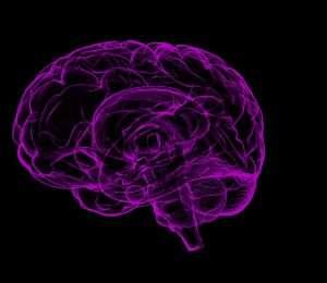 ¿Cómo toma decisiones nuestro cerebro?