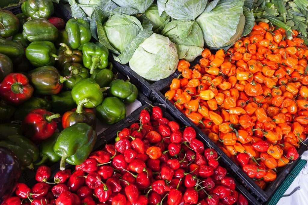¿Qué es la alimentación sostenible y saludable?