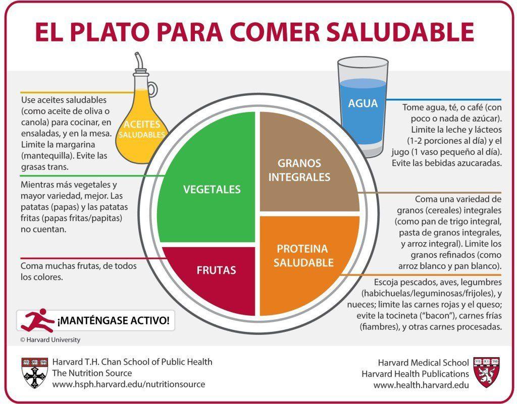 método del planto dieta