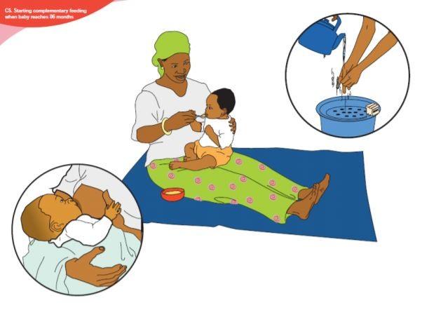 educación nutricional en gambia