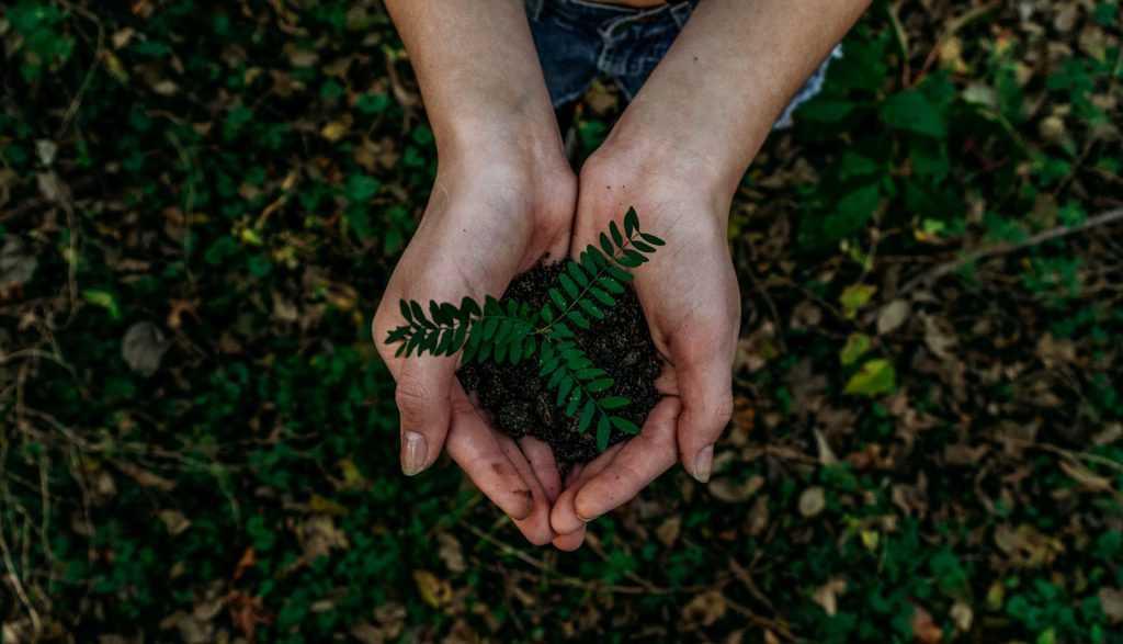 COVID-19 y salud planetaria: la importancia de la huella ambiental