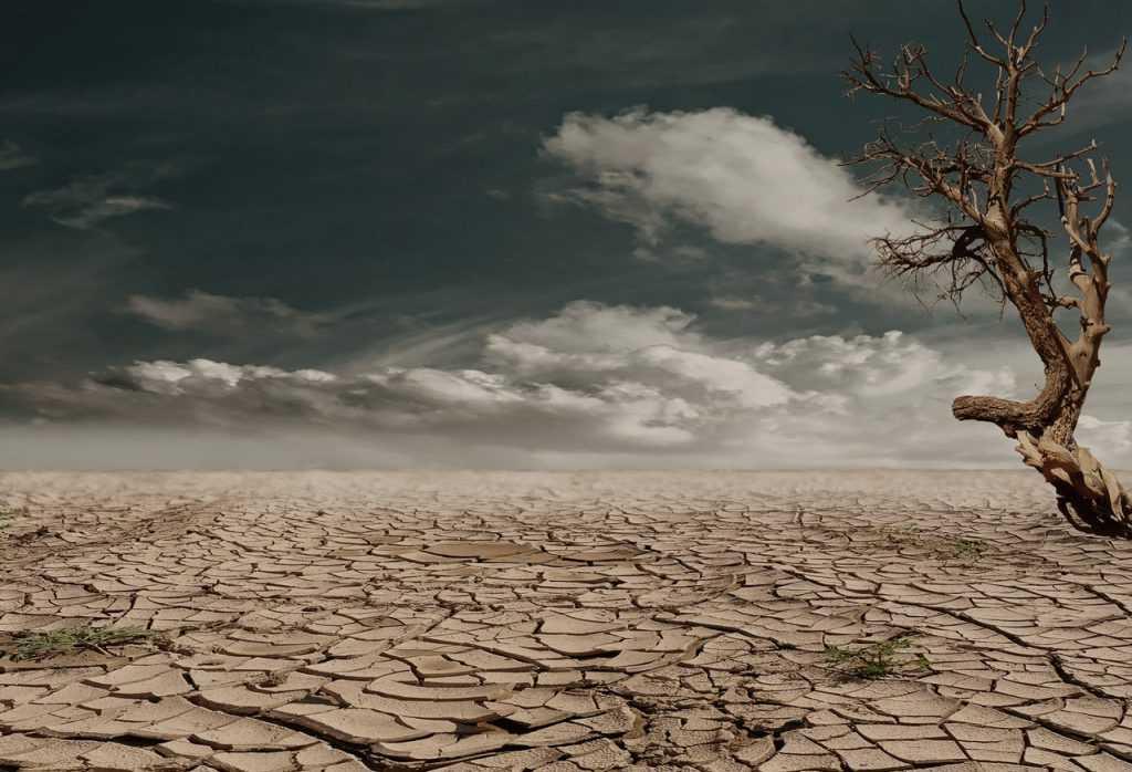 Cambio climático y COVID-19, crisis convergentes