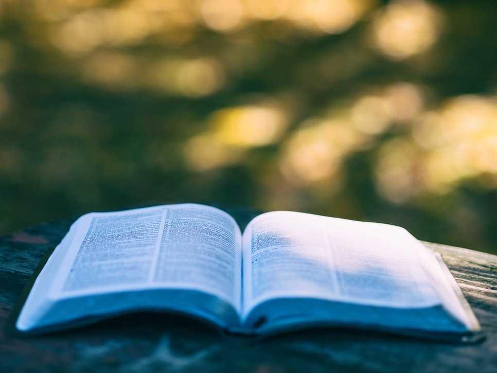 Lecturas para el verano (y otras recomendaciones)