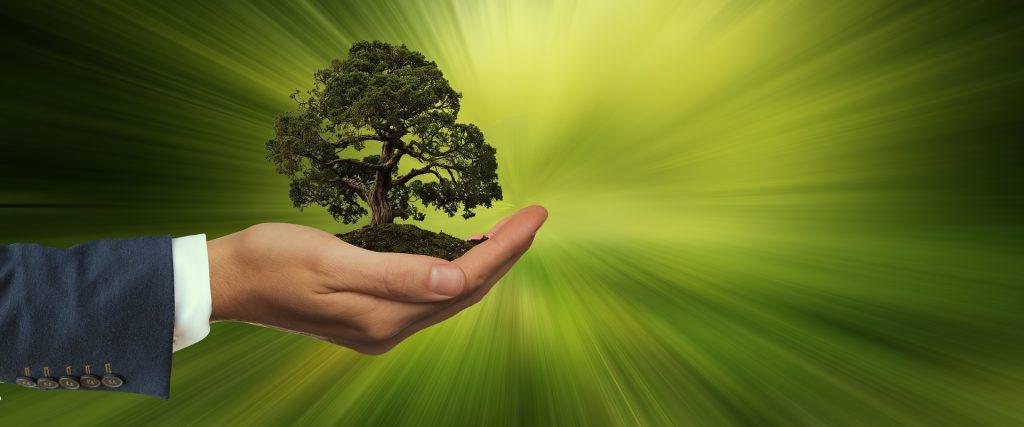 Marketing y ecología, ¿un matrimonio de conveniencia?