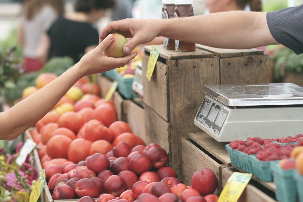 Estratègies per a la transformació del model alimentari. Aprenentatges de l'impacte de la COVID-19.