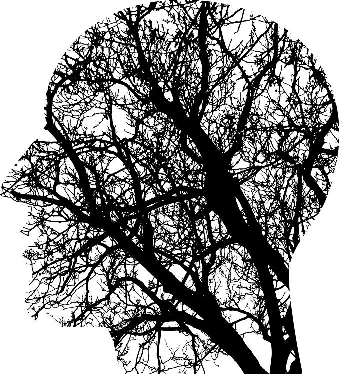 Talleres de la experiencia: programas de entrenamiento cognitivo para personas mayores