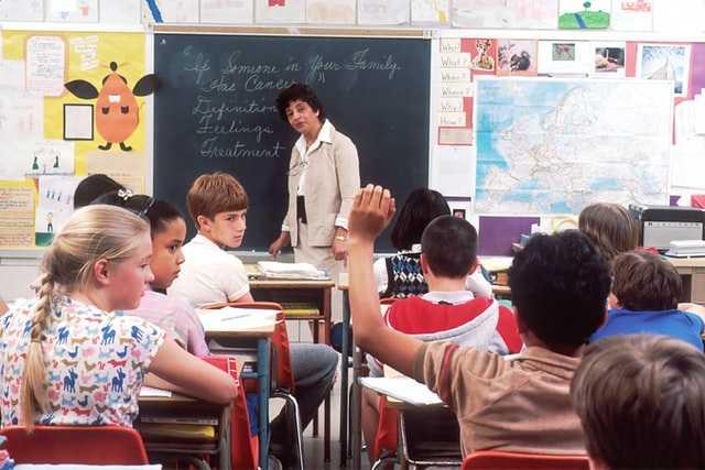 Què poden esperar els estudiants (actuals i futurs) del grau d'Educació Primària?