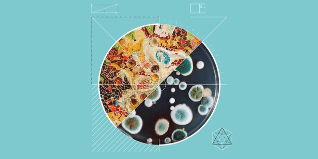 Diálogos sobre arte en la Biennal de Ciudad y Ciencia Barcelona — CCCB