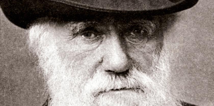 8 Tòpics i llegendes que encara giren al voltant de la figura de Charles Darwin, per Jordi Serrallonga
