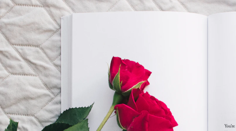 10 Libros imprescindibles para un singular Día Internacional del Libro 2020