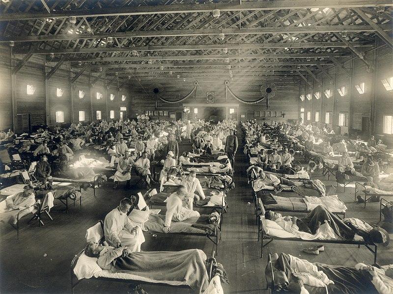 Pandemias en la historia: ¿hemos aprendido de los hechos históricos para combatir la COVID-19?