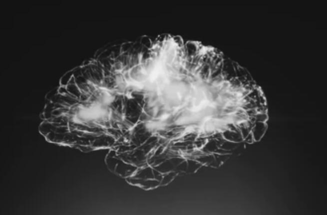 Què és la neuroeducació? — Vídeo webinar