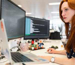 Presentamos el Bachelor's degree in Techniques for Software Development