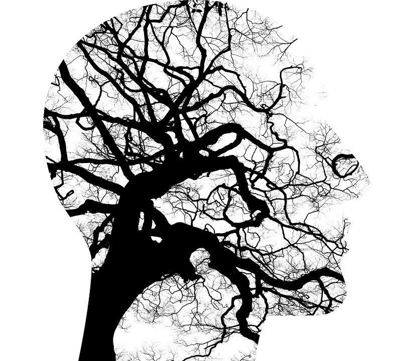 El projecte de recerca MOMENT: les metàfores de la salut mental